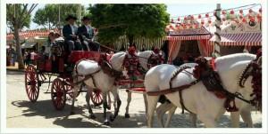 Sevilla Feria 4