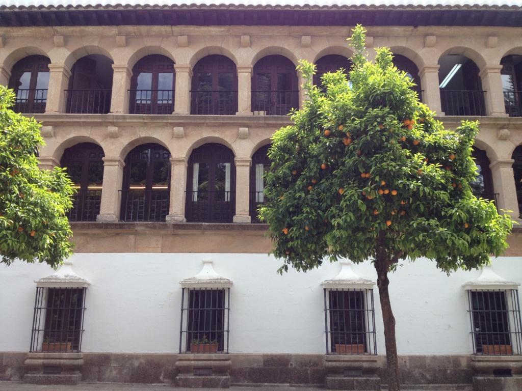 Ronda, Ayuntamiento
